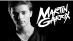MARTIN GARRIX  TOP 2 ANIMALS